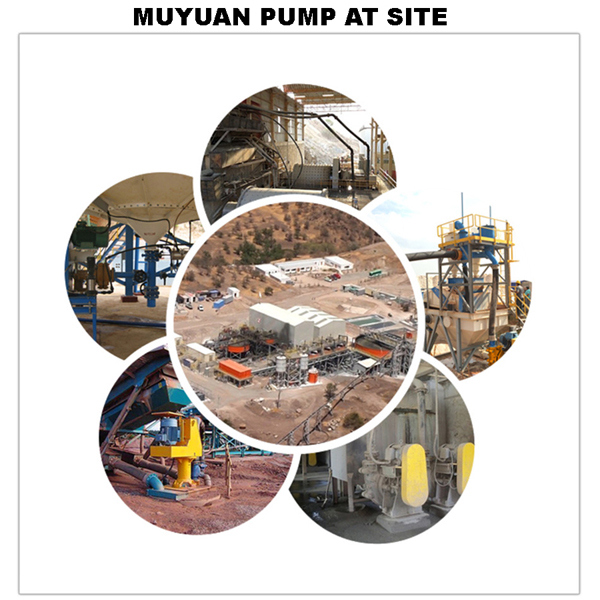Muyuan Pumps allover the World